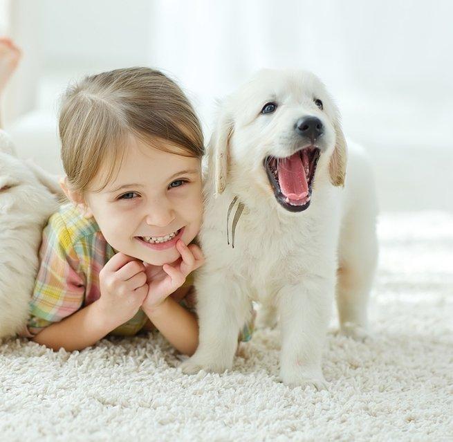 5 пород собак, которые любят детей
