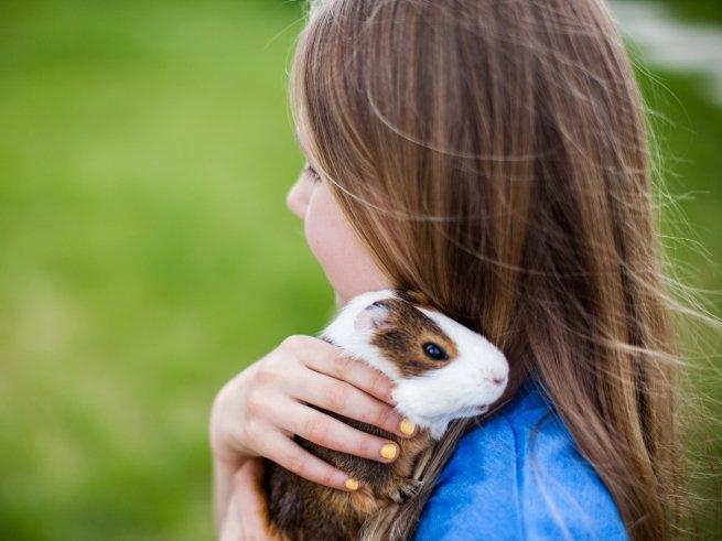 Зоозащитники выступают против контактных зоопарков