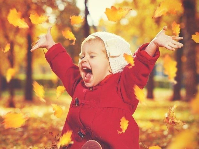 Осенняя природа: наблюдаем вместе с малышом