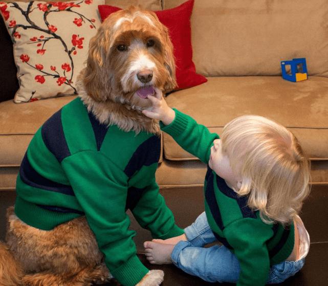 Бабушка одевает внука и собаку в одинаковую одежду