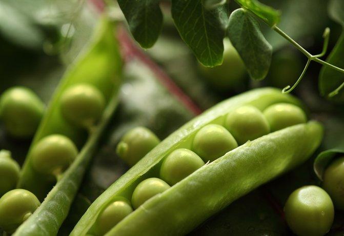 Зеленая стручковая фасоль, сладкий перец