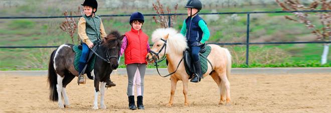 Спорт для ребенка от 1 до 3 лет
