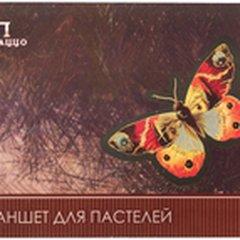 Ирина Шестерова